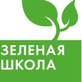 Озеленение в школе 207